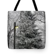 A Light Snow Tote Bag