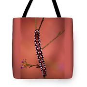 A Little Caterpillar Tote Bag by Jeff Swan