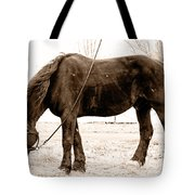 A Little Hay Tote Bag