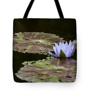 A Little Lavendar Water Lily Tote Bag