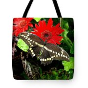 A Little Tattered Tote Bag