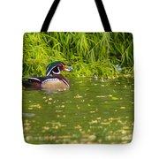A Lone Male Wood Ducks Tote Bag