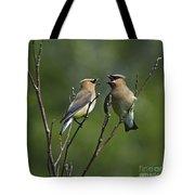 A Love Duet... Tote Bag