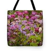 A Lovely Fall Palette Tote Bag
