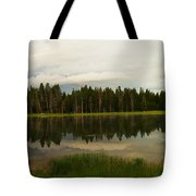 A Lovely Reflection Tote Bag