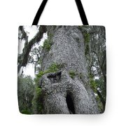 A Lowcountry Textural Study - Ode To Edvard Munck Tote Bag