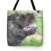 A Loyal Friend Tote Bag