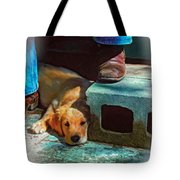 A Man And His Dog Oil Tote Bag