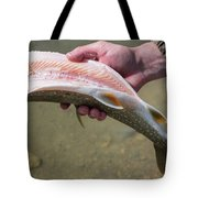 A Man Cleans A Lake Trout Fish Tote Bag