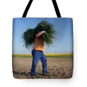 A Man Harvests Sedge To Be Used Tote Bag