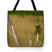 A Marsh In Maine Tote Bag