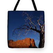A Mesquite Trees And Buttes Tote Bag