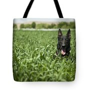 A Military Working Dog Sits In A Field Tote Bag by Stocktrek Images
