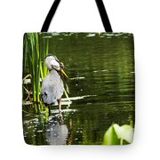 A Missing Frog Tote Bag
