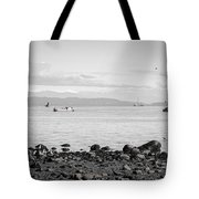 A Moment In Time Herring Season Tote Bag