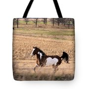 A Moment Of Freedom Tote Bag