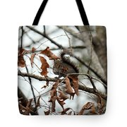 A Moment's Glance Tote Bag