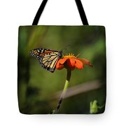 A Monarch Butterfly 1 Tote Bag