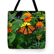 A Monarchs Colors Tote Bag