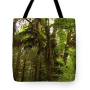 A Moss Covered Tree  In The Ho National Rain Forest Tote Bag