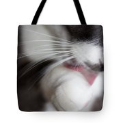 A Most Challenging Model Tote Bag
