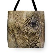 A Mothers Eye Tote Bag