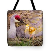 A Mother's Lovely Touch Tote Bag