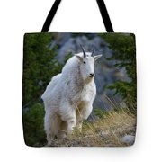 A Mountain Goat Stands On A Grassy Tote Bag