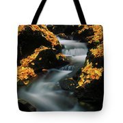 A Mountain Stream Carves A Path Tote Bag