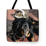A Mouse On A Cat On A Dog In Santa Tote Bag