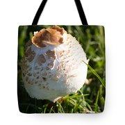 A Mushroom Tote Bag