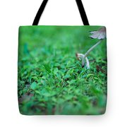 A Mushroom Sprouts Tote Bag