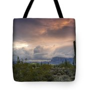 A Mystic Morning  Tote Bag