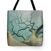 A Naked Tree Tote Bag