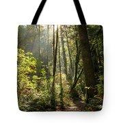 A Narrow Trail Tote Bag