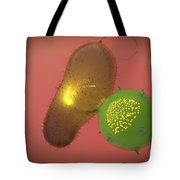 A Natural Killer Cell Injects Toxin Tote Bag by Stocktrek Images