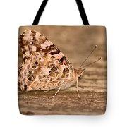 A Neutral Palette Tote Bag by Lori Tambakis