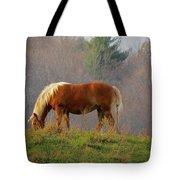 A November Horse Tote Bag
