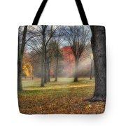 A November Morning Square Tote Bag