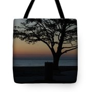 A November Sunset Tote Bag