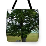 A One Horse Tree And Its Horse Tote Bag