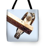 A Osprey Tote Bag