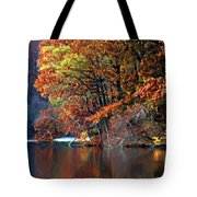 A Painting Barney's Autumn Pond Tote Bag