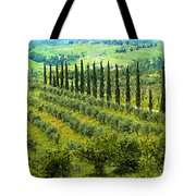 A Painting Tuscan Panoramic 4 Tote Bag