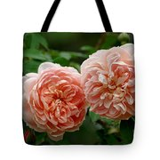 A Pair Of Colette Roses Tote Bag