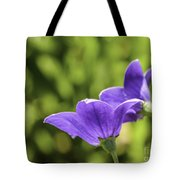 A Pair Of Purple Balloon Flowers Tote Bag