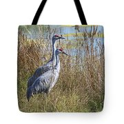A Pair Of Sandhill Cranes Tote Bag