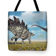 A Pair Of Stegosaurus Dinosaurs Tote Bag