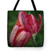 A Pair Of Tulips In The Rain Tote Bag