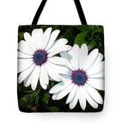 A Pair Of White African Daisies Tote Bag